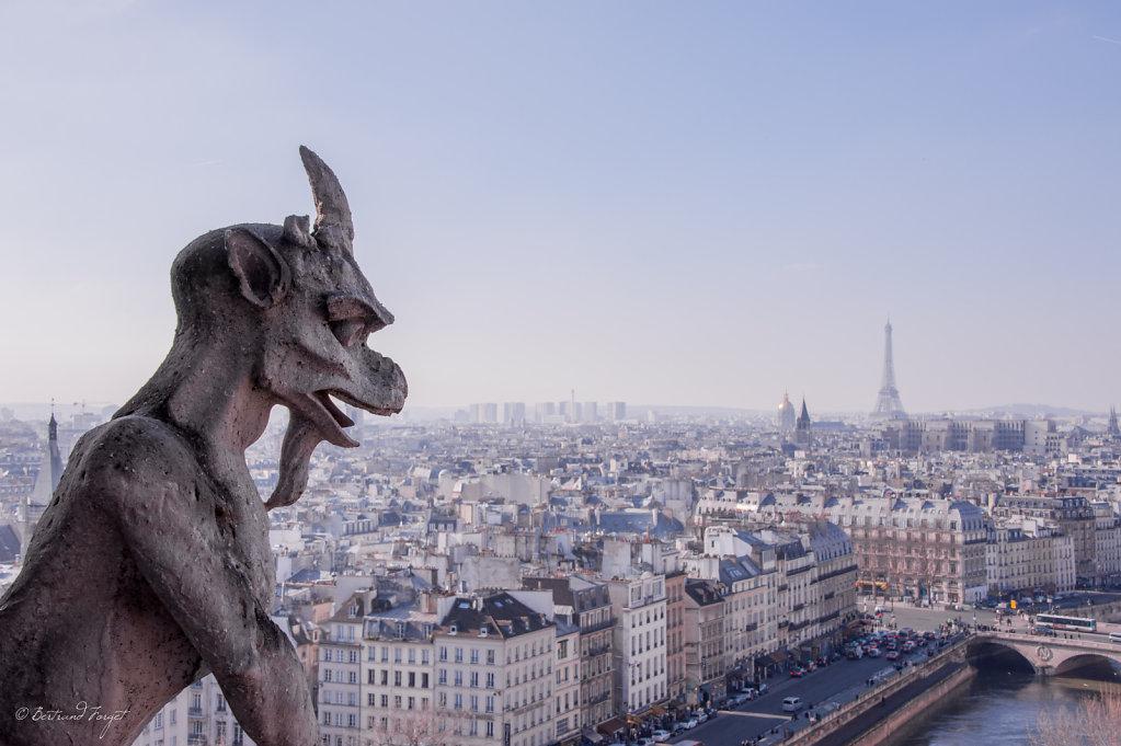 photos-paris-cathedrale-notre-dame-2013-5.jpg
