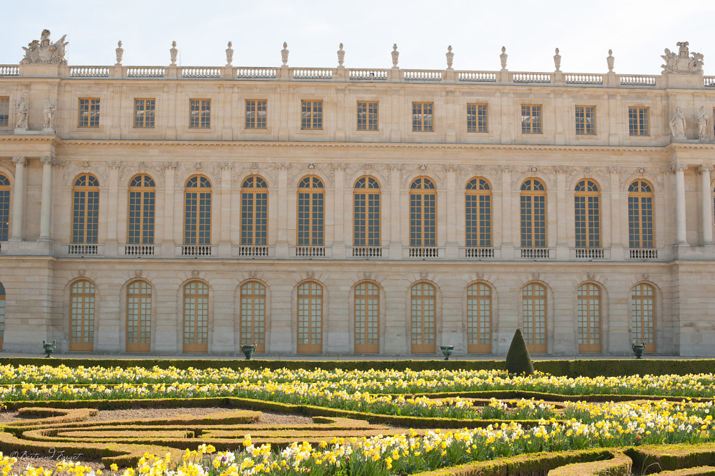 photos-versailles-18.jpg