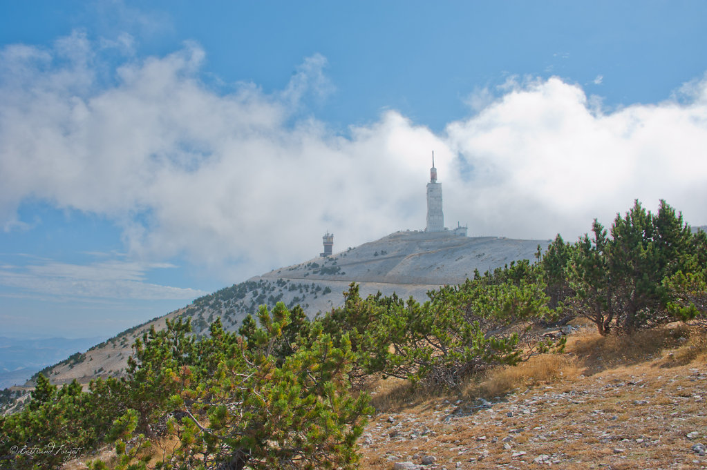 photo-mont-ventoux-vaucluse-2012-006.jpg