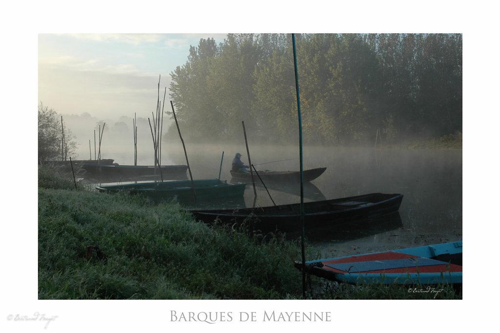 La Sarthe à Ecouflant